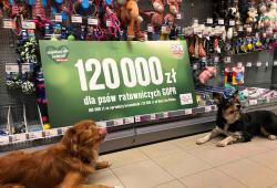 Klienci Maxi Zoo hojnie wsparli psy ratownicze GOPR